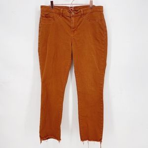 J Brand Skinny Leg Jeans in Terracotta